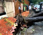 Rains clobber Mumbai, MMR for second day but no fatalities