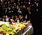 ISRAEL RECHOVOT HOLIDAY TU BISHVAT
