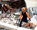 Rescuers conduct drill against disasters