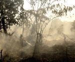 INDONESIA RIAU PEATLAND FIRE