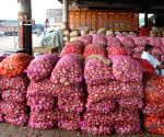 Stock of onions at wholesale vegetable market