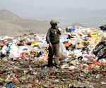 YEMEN SANAA GARBAGE CHILDREN