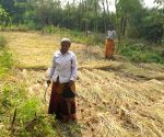 Free Photo: Santhals of Bengal go back to their roots, champion agriculture that nurtures ecosystems