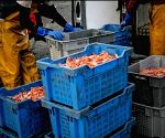 UK unveils new fund to back fishing industry