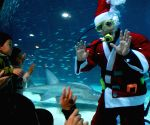 A diver in Santa Claus costume greets visitors as he swims with sardines