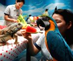 Escape the summer heat at the 63 Seaworld in Seoul, South Korea