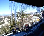 Tourists flock to Shimla, enjoy snowfall