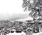 More snowfall in Shimla, Manali