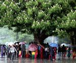 Rains bring down mercury in Himachal