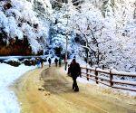 Heavy snowfall in Kashmir blocks highways