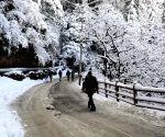 Himachal gets snowfall, rain