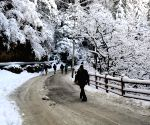 Himachal's Keylong gets first snow of season