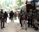 Top JeM commander among 5 killed in J&K gunfight