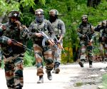 Most militants killed in J&K in 2018 in 4 years(IANS Special)