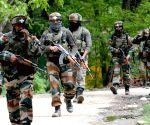 Major, Pakistani mastermind among 7 killed in Pulwama