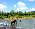 SL appoints high level task force to boost tourism