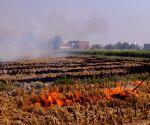 Punjab Stubble burning