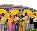 Parliament - TDP MPs