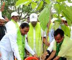 KCR Plants trees -  'Haritha Haram
