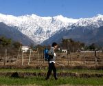 Temperatures below freezing point in Himachal