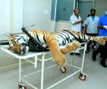 Tigress Avni shot from behind, says expert's report