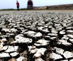 Chembarambakkam Lake runs dry