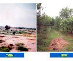 Free Photo: Then & Now