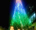 Free Photo: This year, Mumbai's famed Christmas tree celebrates R-Day too.