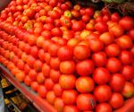 Tomato prices skyrocket to Rs 70/kg in Delhi-NCR (Ld)