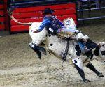 CANADA TORONTO ROYAL HORSE SHOW RODEO
