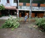 Uprooted trees being cleared after cyclone Nivar wreaked havoc in Chennai
