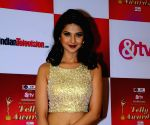 14th Indian Telly Awards