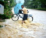 Typhoon Lupit lands in China's Guangdong