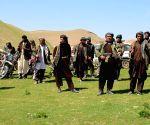 Key Taliban commander arrested in Afghanistan
