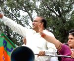 Ananth Kumar campaigns for BJP