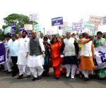 NDA MPs' 'Save Democracy' rally