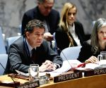 UN SECURITY COUNCIL MEETING SYRIA