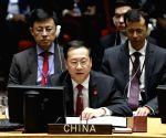 UN-SECURITY COUNCIL-MEETING-MERCENARY ACTIVITIES IN AFRICA