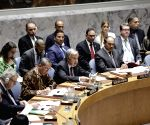 UN-SECURITY COUNCIL-MEETING-CONFLICT PREVENTION AND MEDITATION