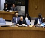 UN SECURITY COUNCIL ARAB LEAGUE COOPERATION CHINESE ENVOY