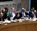 UN SECURITY COUNCIL MEETING SYRIA