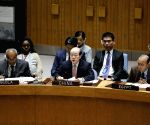 UN-SECURITY COUNCIL-REGIONAL-PEACE AND SECURITY