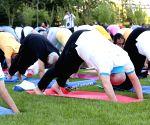 United Nations: International Yoga Day