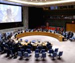 UNSC adopts resolution to renew Syria humanitarian mechanism