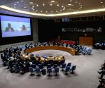 Covid-19: UNSC to meet on pandemic impact