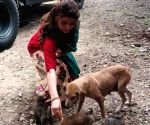 Urvashi Rautela: Animal life matters