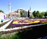 """US """"disappointed"""" by Turkey's decision on Hagia Sophia"""