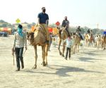Victims of apathy, camel numbers dwindling in Rajasthan