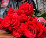 Man proposes to woman on EW Metro on Valentine's Day