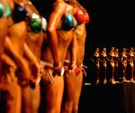 Vancouver (Canada): 2014 International Drug Free West Coast Classic Bodybuilding competition